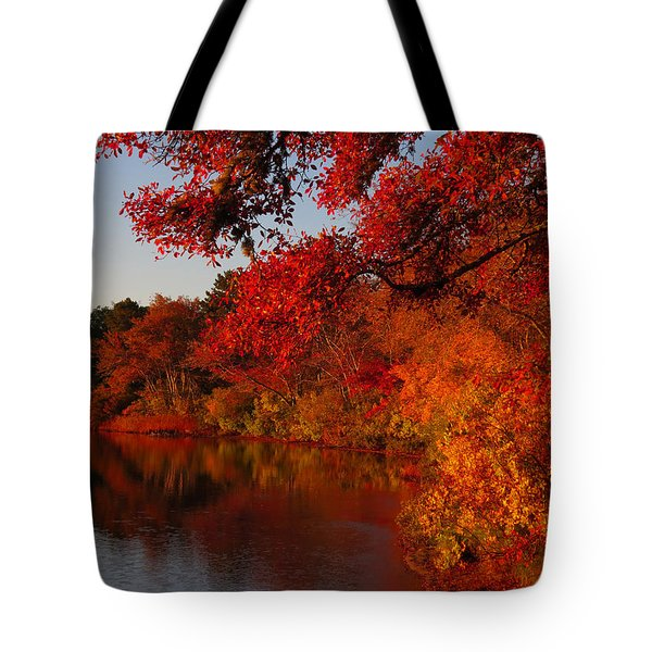 Tote Bag featuring the photograph Autumn Splendor  by Dianne Cowen