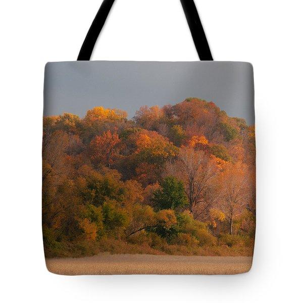 Autumn Splendor Tote Bag by Don Spenner