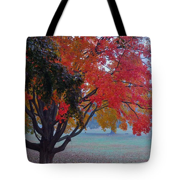 Autumn Splendor Tote Bag by Lisa Phillips