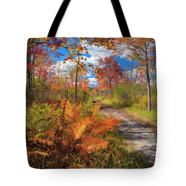 Autumn Splendor Square Tote Bag by Bill Wakeley