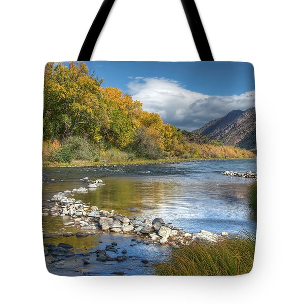 Autumn Stance Tote Bag by Britt Runyon
