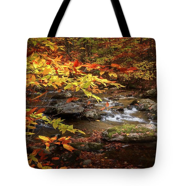 Autumn Stream Tote Bag by Bill Wakeley