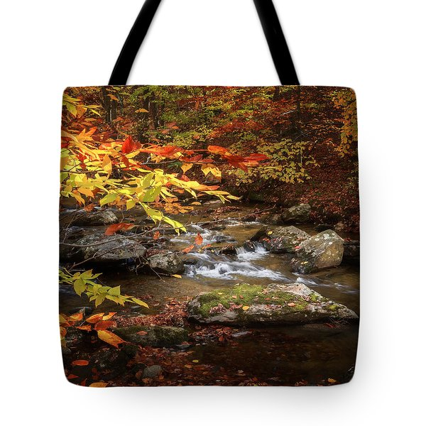 Autumn Stream Square Tote Bag by Bill Wakeley