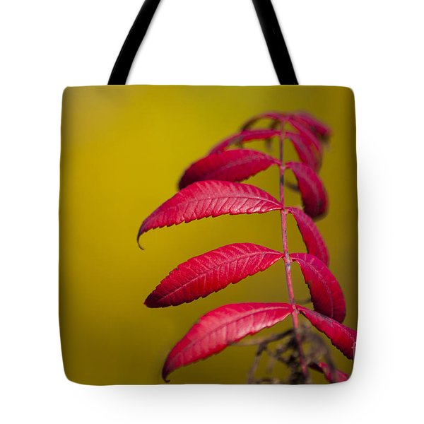 Autumn Sumac Tote Bag