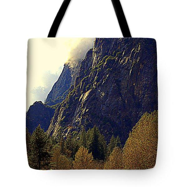 Autumn Sun Glow Tote Bag