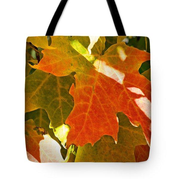 Autumn Sunlight Tote Bag