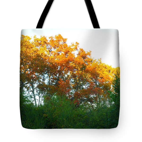 Autumn Sunlight Tote Bag