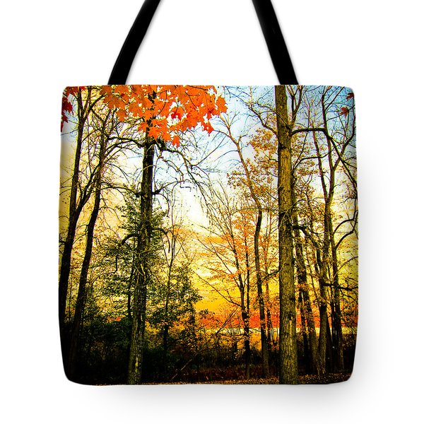 Tote Bag featuring the photograph Autumn Sunset  by Sara Frank