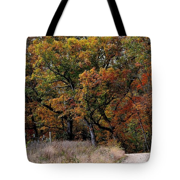 Autumn Trail 2 Tote Bag