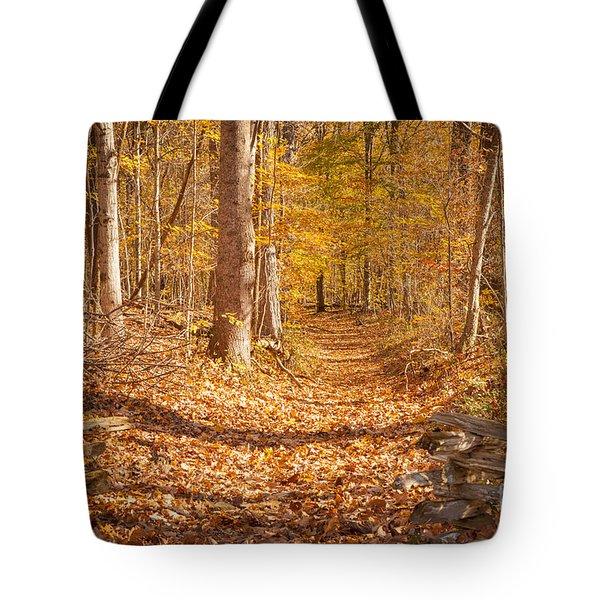 Autumn Trail Tote Bag by Brian Jannsen
