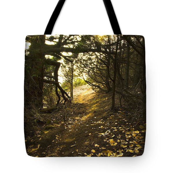 Autumn Trail In Woods Tote Bag