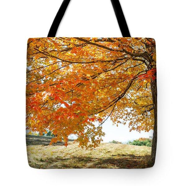 Autumn Tree - 2 Tote Bag