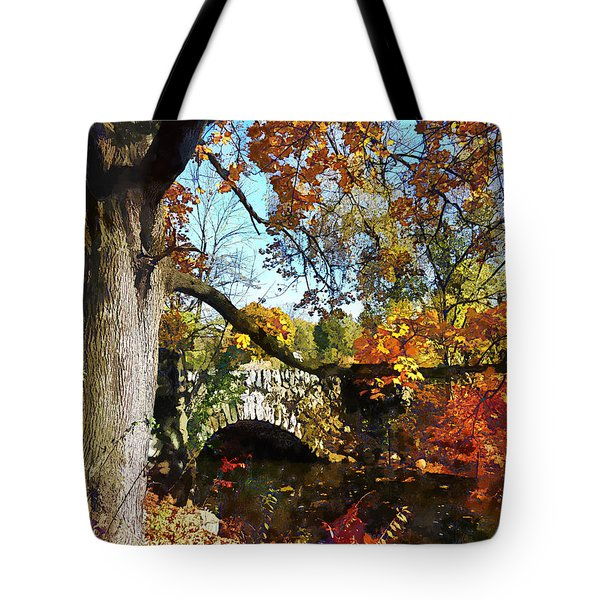 Autumn Tree By Small Stone Bridge Tote Bag by Susan Savad