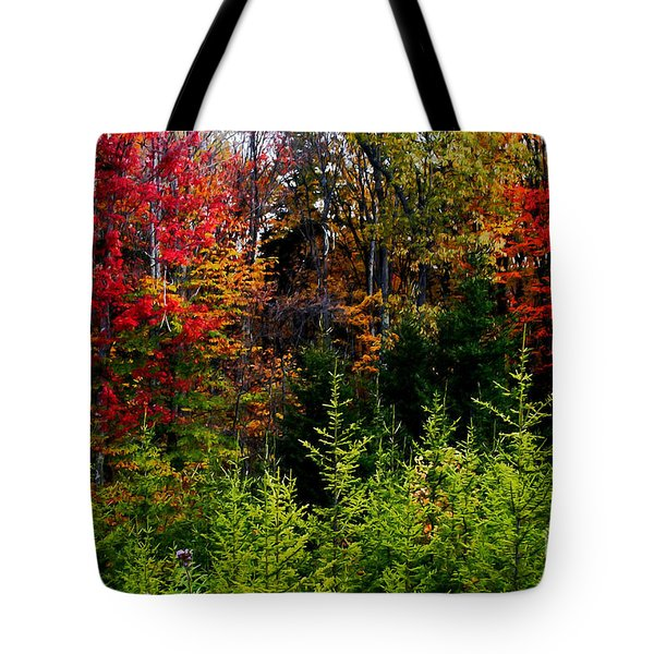 Autumn Tree Foliage Tote Bag by Lanjee Chee