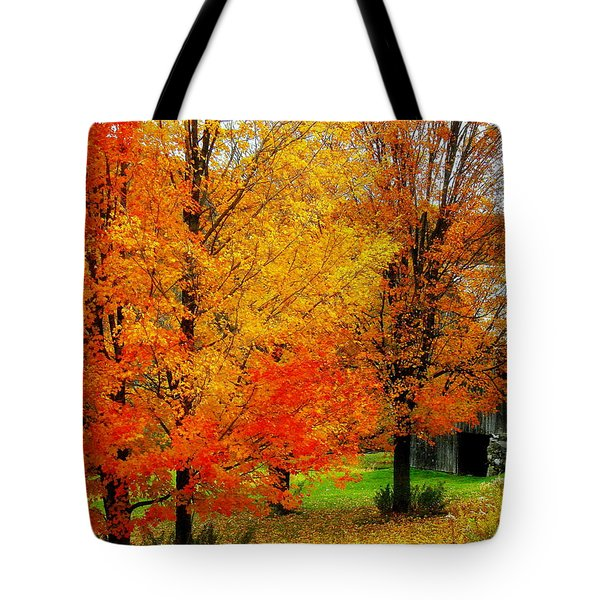 Tote Bag featuring the photograph Autumn Trees By Barn by Rodney Lee Williams