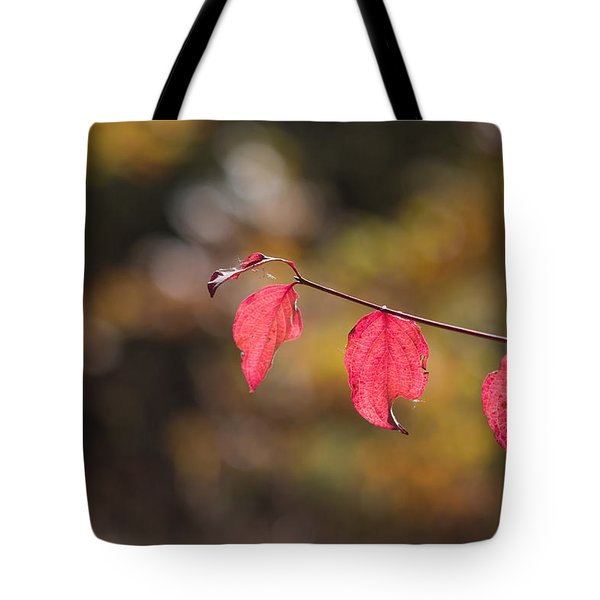 Tote Bag featuring the photograph Autumn Twig With Red Leaves by Jivko Nakev
