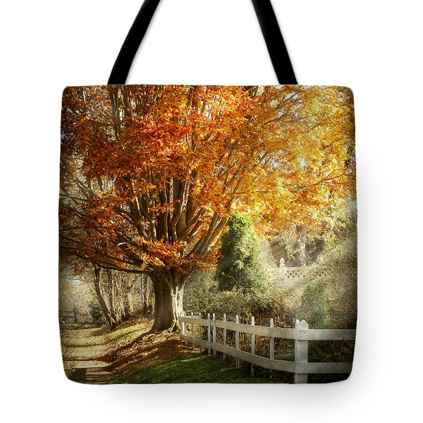 Autumn - Westfield Nj - I Love Autumn Tote Bag by Mike Savad