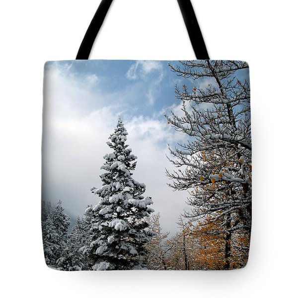 Autumn Winter Colors 2 Tote Bag