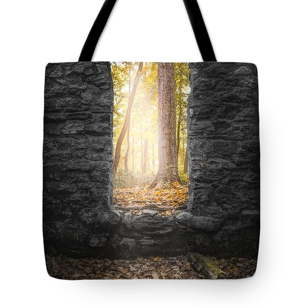 Tote Bag featuring the photograph Autumn Within Long Pond Ironworks - Historical Ruins by Gary Heller