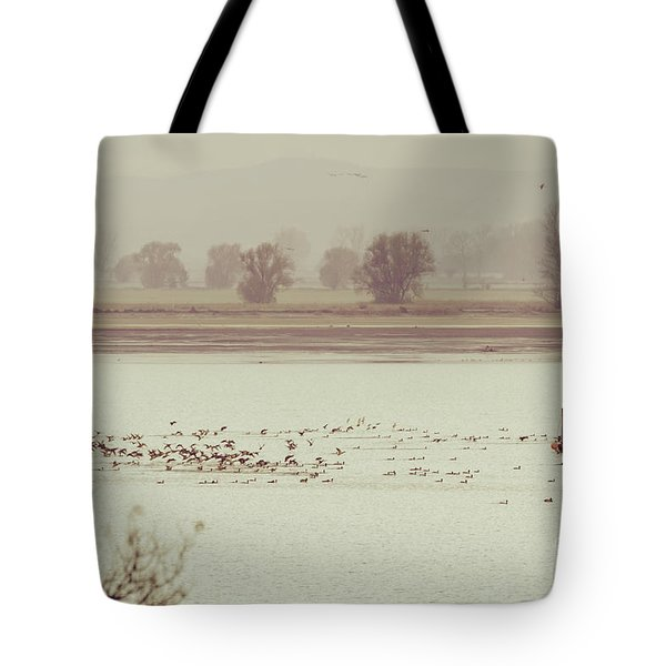 Autumnal Dreamland Iv Tote Bag