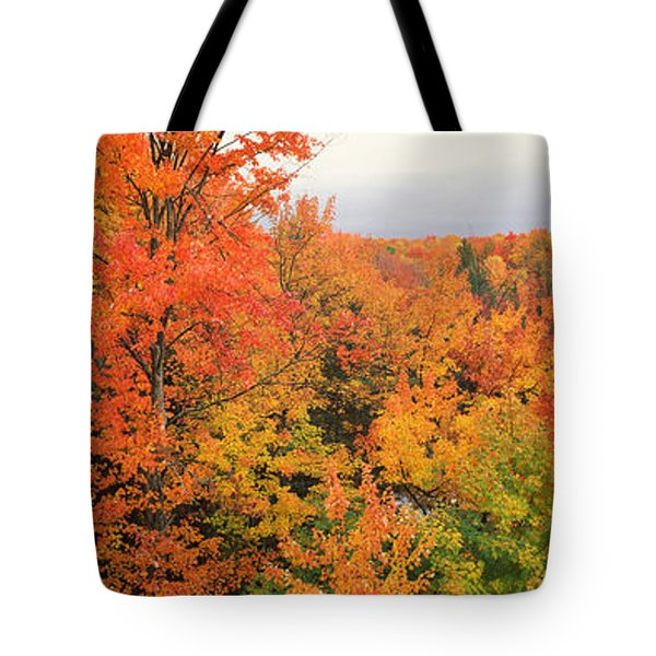 Autumnal Trees In A Forest, Hiawatha Tote Bag
