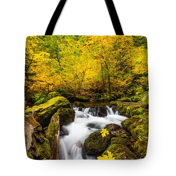 Autumn's Beginnings Tote Bag