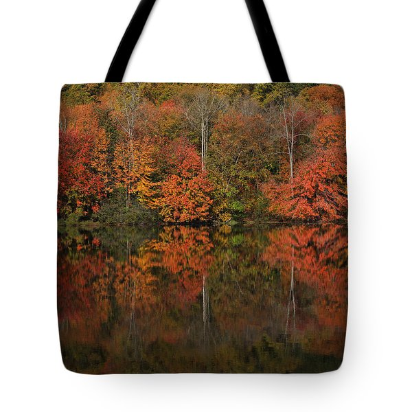 Autumns Design Tote Bag by Karol Livote