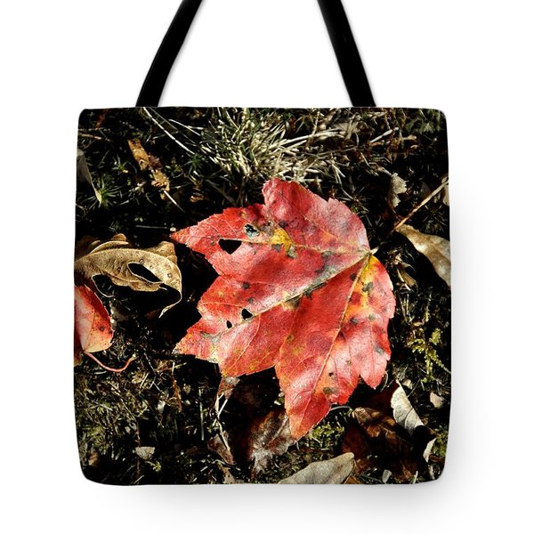 Autumns End Tote Bag by JAMART Photography