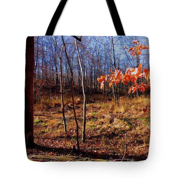 Autumn's End Tote Bag