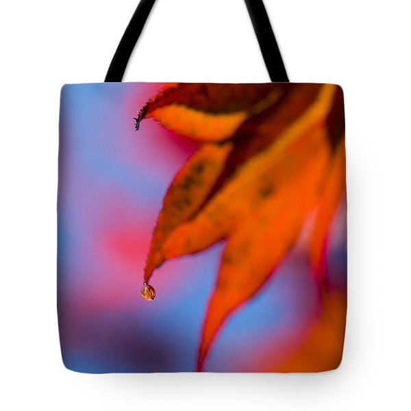 Autumn's Finest Tote Bag by Anne Gilbert
