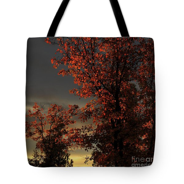 Autumn's First Light Tote Bag
