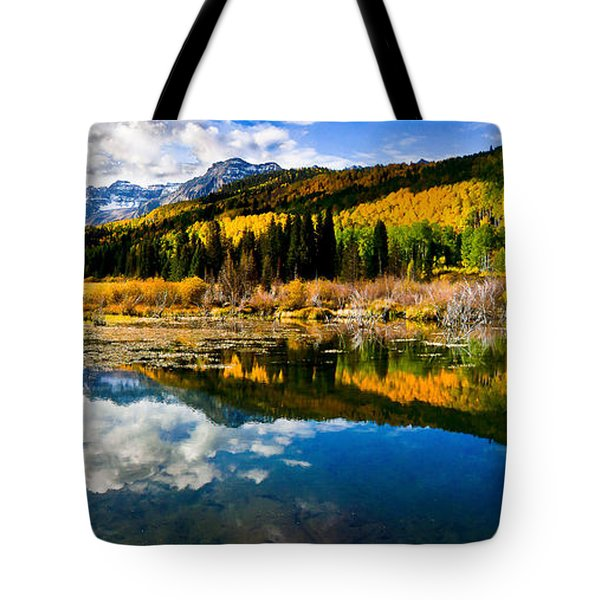 Autumn's Glory Tote Bag by Steven Reed