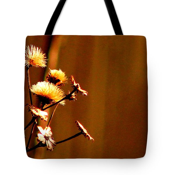 Autumn's Moment Tote Bag by Bruce Patrick Smith