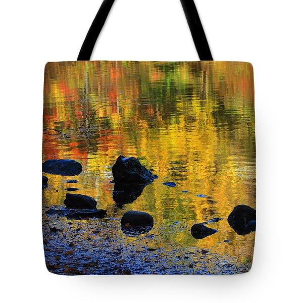 Autumns Rainbow Tote Bag by Karol Livote