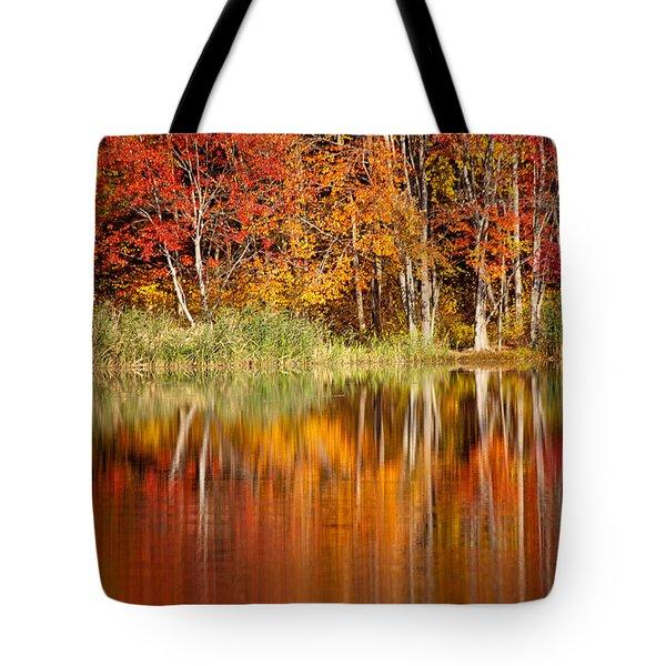 Autumns True Colors Tote Bag