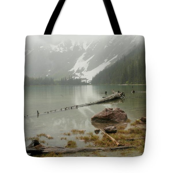 Avalanche Glacier National Park Tote Bag by Jeff Swan