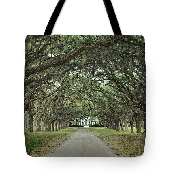 147706-avenue Of The Oaks  Tote Bag
