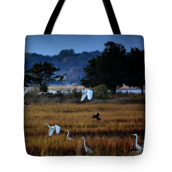 Aviary Convention Tote Bag