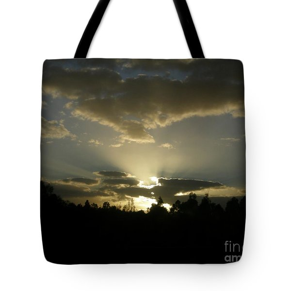 Awakening Tote Bag by Bev Conover