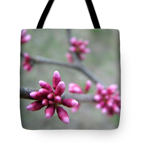 Awakening Bloom Tote Bag by Kathy Churchman