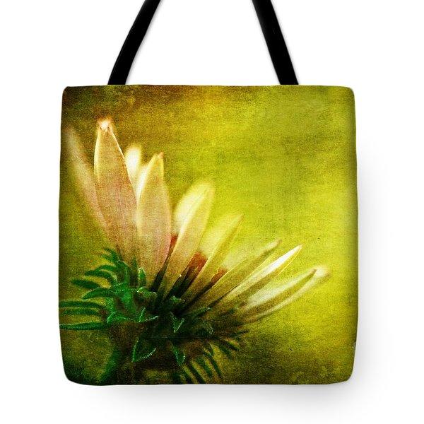 Awakening Tote Bag by Lois Bryan