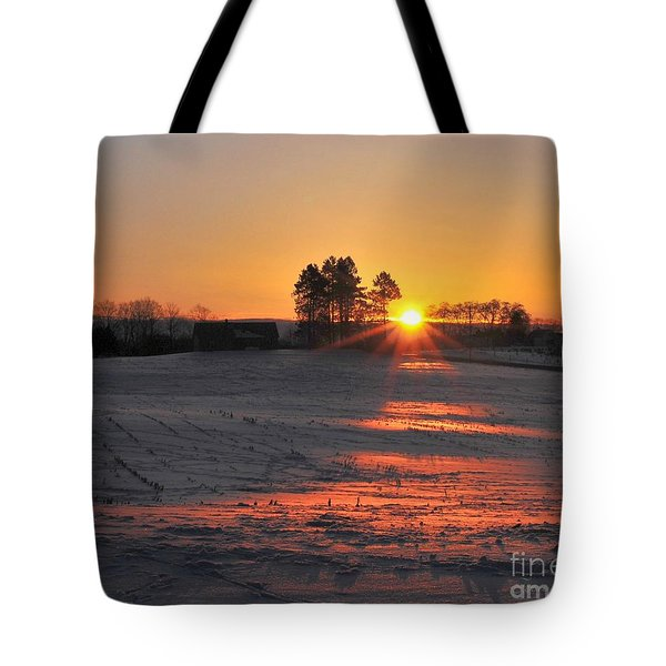 Tote Bag featuring the photograph Awakening by Terri Gostola