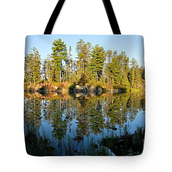 Awesub Morning Tote Bag by Larry Ricker