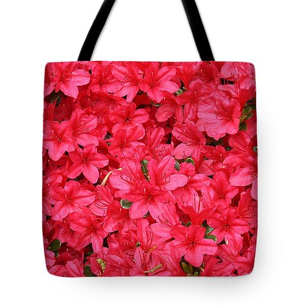 Azalea In Bloom Tote Bag