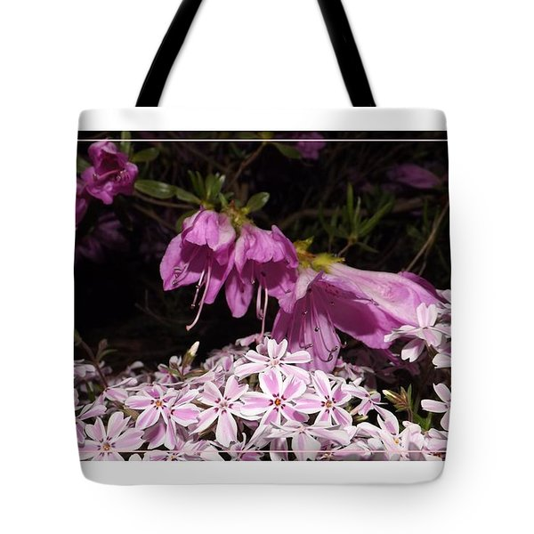 Azalia And Phlox Friends Tote Bag by Sara  Raber