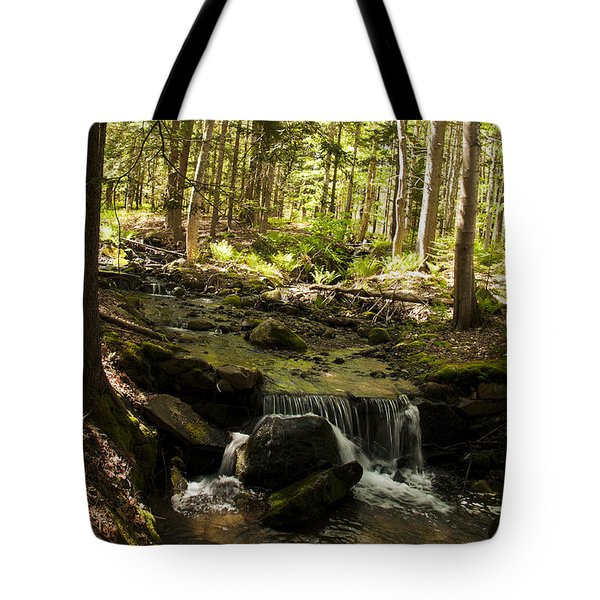 Babbling Battie Brook Tote Bag by Daniel Hebard
