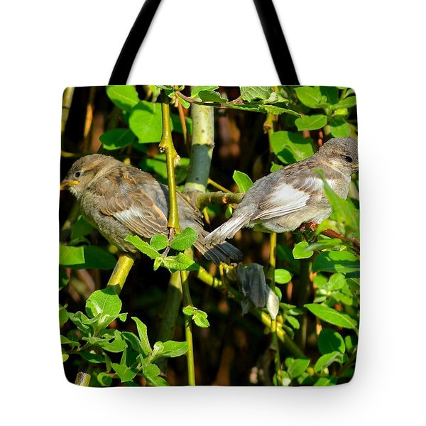 Babies Afraid To Fly Tote Bag by Frozen in Time Fine Art Photography