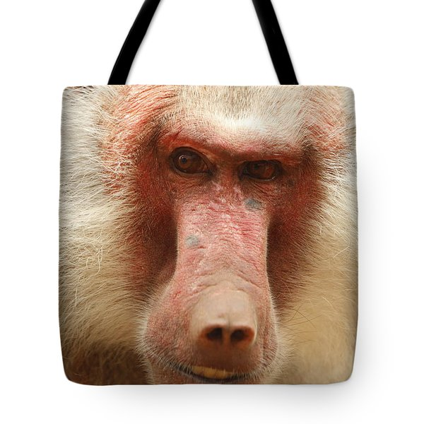 Baboon Tote Bag by Craig Dingle