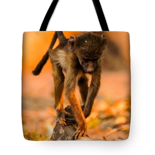 Baby Balance Tote Bag by Alistair Lyne