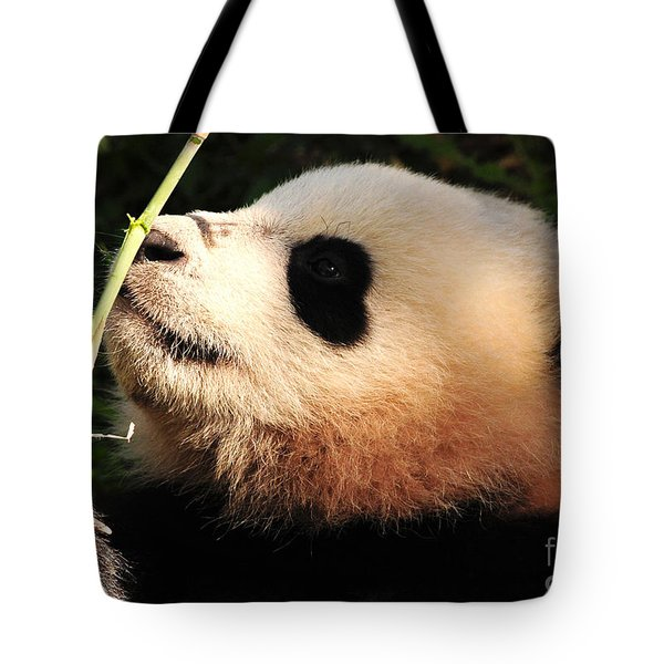 Tote Bag featuring the photograph Baby Bear Bamboo Inspection by Olivia Hardwicke
